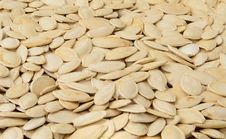 Free Close-up Of Pumpkin Seeds, Food Background, Isomet Royalty Free Stock Image - 24902136