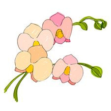 Free Illustrated Cute Flowers Stock Images - 24903194