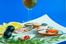 Free Oysters And Wine Stock Image - 24918801