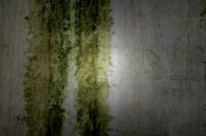 Free Textured Wall With Nice Light Royalty Free Stock Image - 24919456