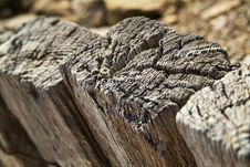Free Wooden Texture Stock Photography - 24919662