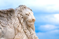 Free Winged Lion Head Royalty Free Stock Images - 24923979