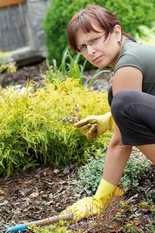 Free Middle Age Woman Gardening In Sunny Day Royalty Free Stock Image - 24924416