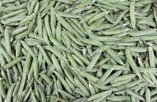 Free Pea Pods Stock Photo - 24924620