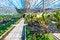 Free Orchid Garden Stock Photos - 24921643