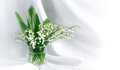 Free Lily Of The Valley Royalty Free Stock Photography - 24930117