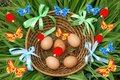 Free Basket Of Easter Eggs Royalty Free Stock Image - 24935406