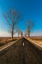 Free Landscape With Straight Empty Road Stock Photos - 24939633