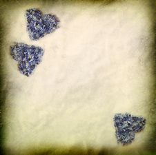 Free Paper Texture And Flower Hearts Stock Images - 24934644
