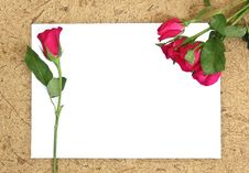 Free Rose And Blank Paper Royalty Free Stock Photo - 24934785