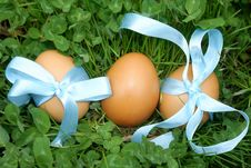 Free Easter Eggs Stock Images - 24935534
