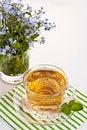 Free Herbal Tea Stock Photo - 24940940