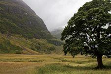 Free Landscape Of Scotland Stock Photo - 24941060