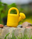 Free Kids' Watering Can In The Garden Stock Photo - 24964120