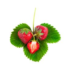 Free Strawberries On Green Leaves Royalty Free Stock Photo - 24963205