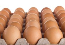 Carton Of Fresh Brown Eggs Stock Image