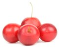 Free Red Cherry Plums Royalty Free Stock Photo - 24984745