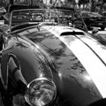 Free Classic Sport American Car Stock Images - 24986954
