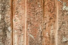 Free Old Wood Texture Royalty Free Stock Photo - 24982985