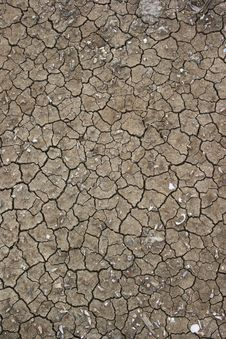 Free Cracked Soil Texture. Stock Photo - 24990410