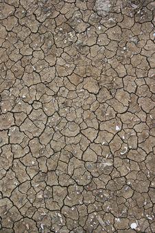 Cracked Soil Texture. Stock Photo