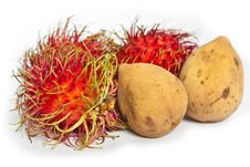 Free Tropical Fruits Rambutan And Lansium Domesticum Royalty Free Stock Image - 24991056