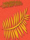 Free Tangerine Fern Background Stock Photo - 257180
