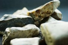 Free Pebbles Stock Photography - 252752