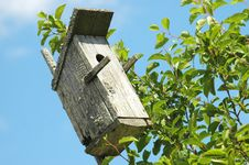 Free Bird House Royalty Free Stock Photo - 252885