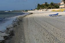 Free Beach Recliner Stock Photo - 259470