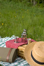 Free Basket Of Picnic Stock Images - 2503794