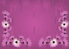 Free Pink Grunge Frame Royalty Free Stock Images - 2501859