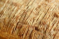 Free Shredded Wheat Stock Photography - 2505442