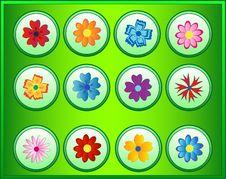 Free Flowers Stock Photo - 2506720