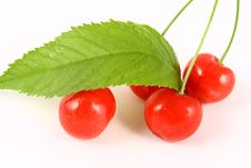 Free Cherry Stock Images - 2507764