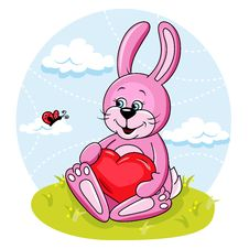 Free Bunny With Heart Stock Photography - 25000842