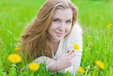 Free Girl On Dandelion Royalty Free Stock Photo - 25002835