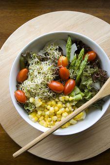 Free Mixed Salad Royalty Free Stock Image - 25003476