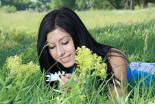 Free Beautiful Young Woman Lying On Grass Royalty Free Stock Photography - 25005327
