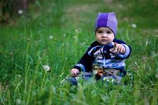 Free A Child In Dandelions Stock Photography - 25007202