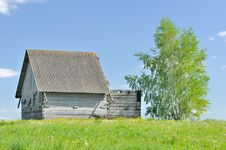 Free Unfinished Wooden Country House With Birch Tree Royalty Free Stock Images - 25014569