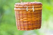 Free Hanging Basket Royalty Free Stock Image - 25020516