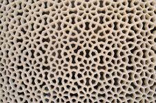 Free Marbled  Lattice_02 Royalty Free Stock Photography - 25021127