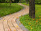 Free Walk Path In The Park Stock Photos - 25029653