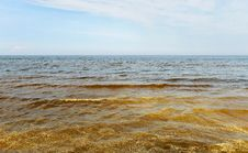 Free Dirty Baltic Sea. Stock Images - 25031304
