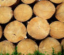 Free Lumber Stock Photos - 25036833