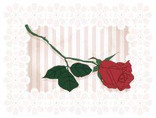 Free Vintage Framed Rose Royalty Free Stock Images - 25043789