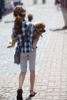 Girl Carries Her Puppy Royalty Free Stock Photo