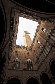 Free Palazzo Della Signoria Royalty Free Stock Photo - 25052445