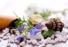 Free Sea Salt And Flowers Close-up Shot Stock Image - 25054501